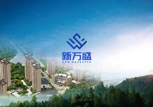 甘肅萬盛置業企業官網建設