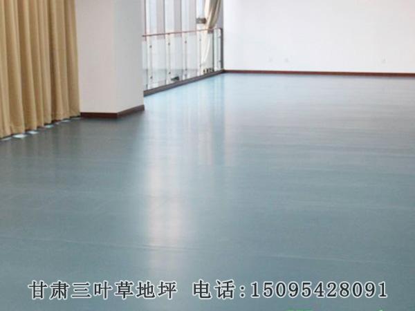 舞蹈练功房专用地板胶