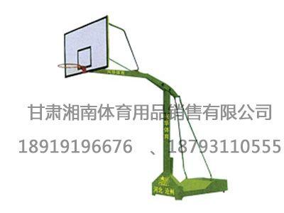 1005移动式独臂篮球架