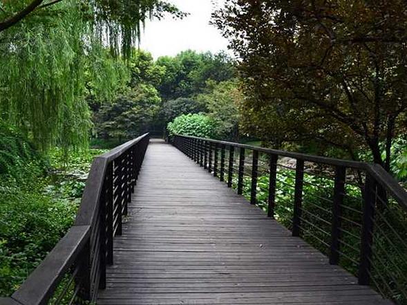 防腐木木棧道