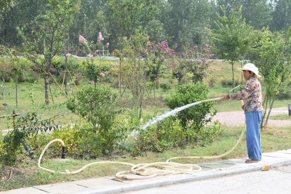 单位园林绿化