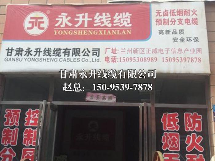 甘肅AG亚游国际厅線纜有限公司土門墩門店地址