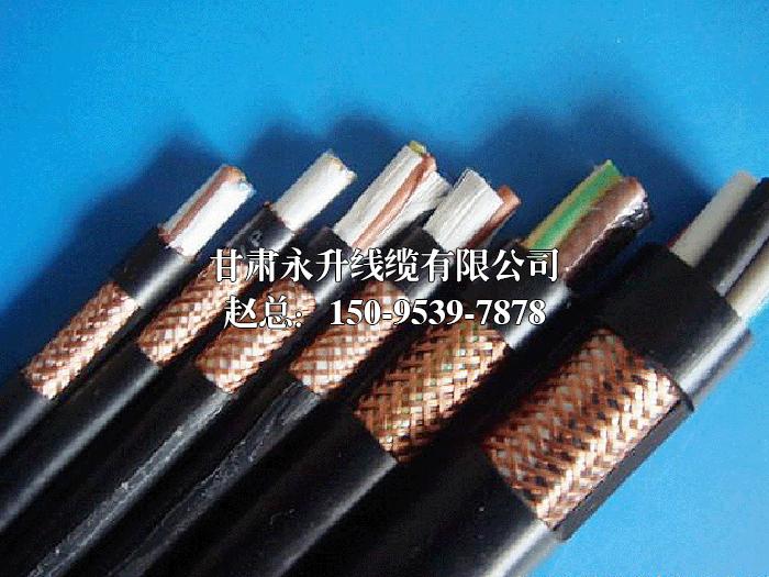屏蔽型控制电缆