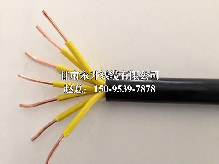 兰州阻燃耐火型控制电缆零售价格