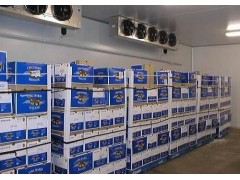 蘭州醫藥冷庫