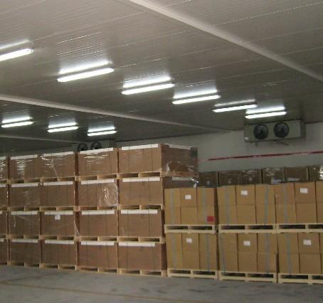 蘭州建10000平大中型冷庫建設、安裝、冷庫價格總項目投資必須是多少