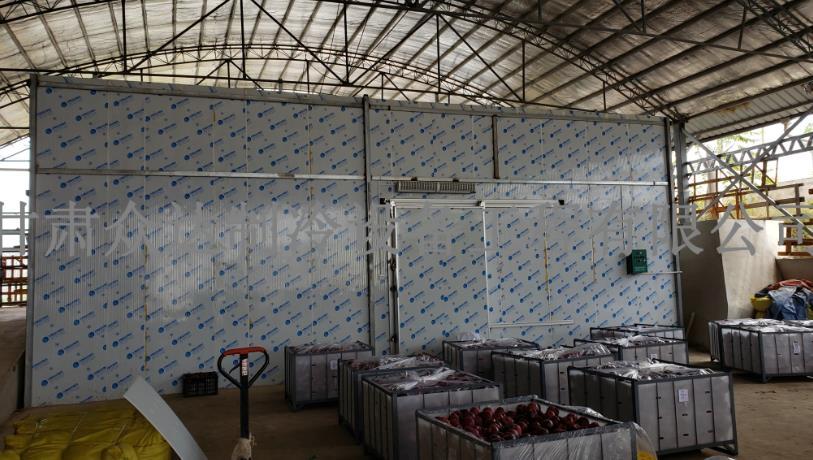 磐安恒丰果业1000吨保鲜库