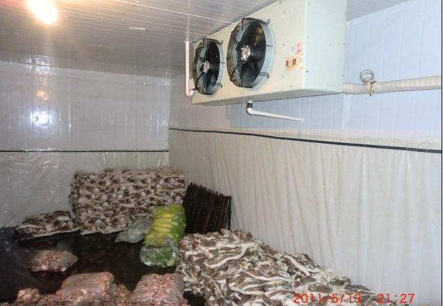 果蔬保鲜库--建造100吨保鲜冷库需要多少钱