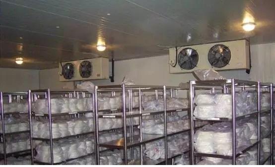 甘肃冷库—冷库设备及冷库设计安装过程中的各种注意事项