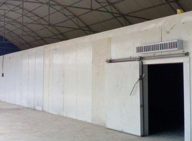 甘南冷库公司告诉您水果冷库安装的重要性和好处