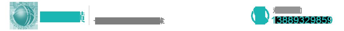 沈阳光网纵横电子商行_Logo
