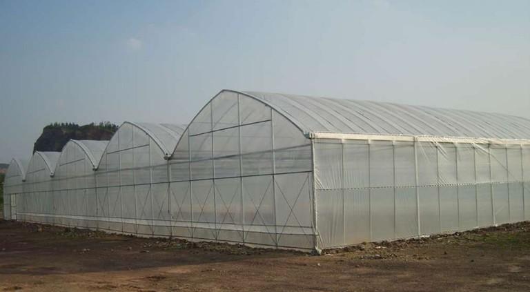 温室大棚建造时应该注意哪些问题