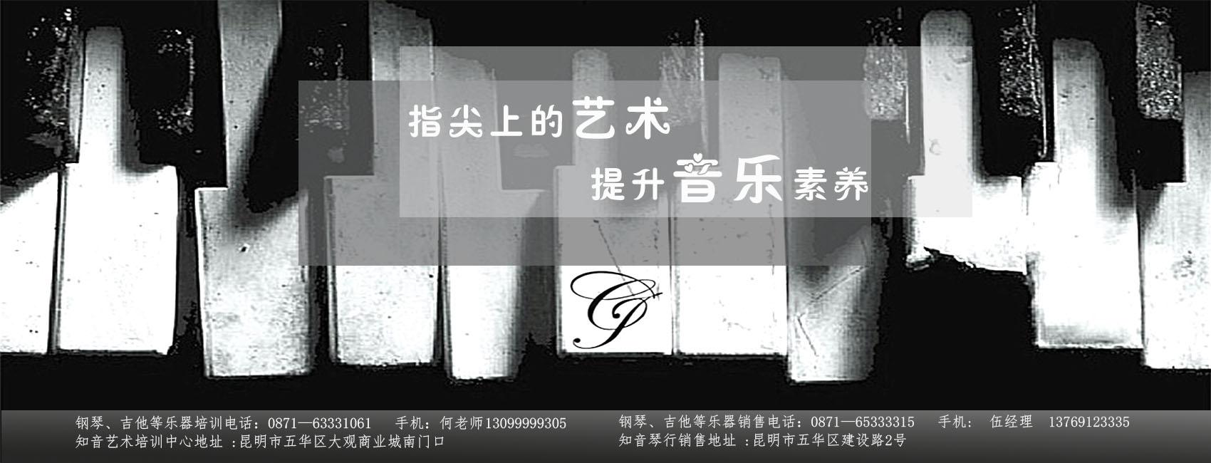 昆明钢琴培训
