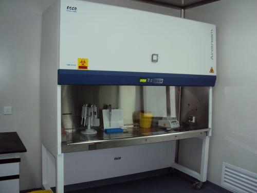实验室 超净工作台