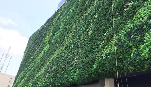 未来中心户外植物墙案例