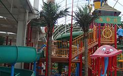 福州水上乐园榕树棕榈树和仿真植物造景