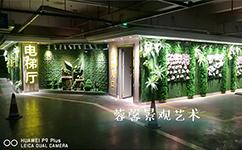 植物墙的天地设计,又一个设计新亮点