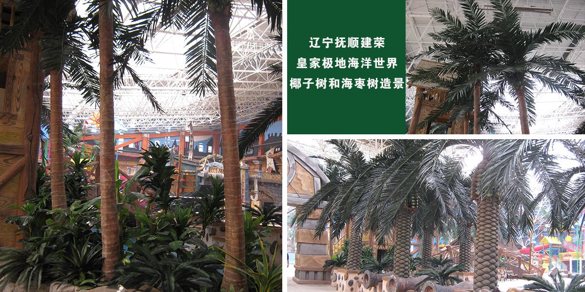 辽宁抚顺建荣皇家极地海洋世界椰子树和海枣树造景