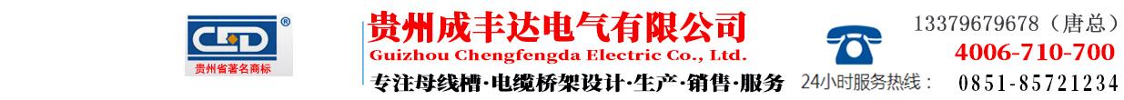 台灣成豐達電氣有限公司