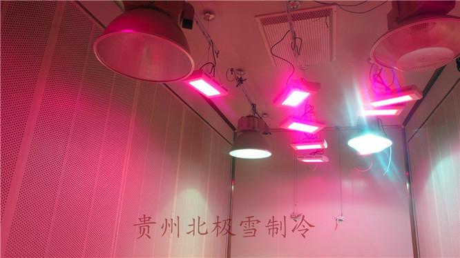 贵阳科研冷库