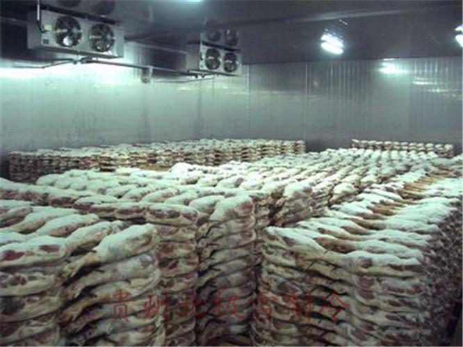 贵州生产加工速冻库