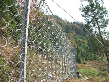 贵州环形防护网案例展示