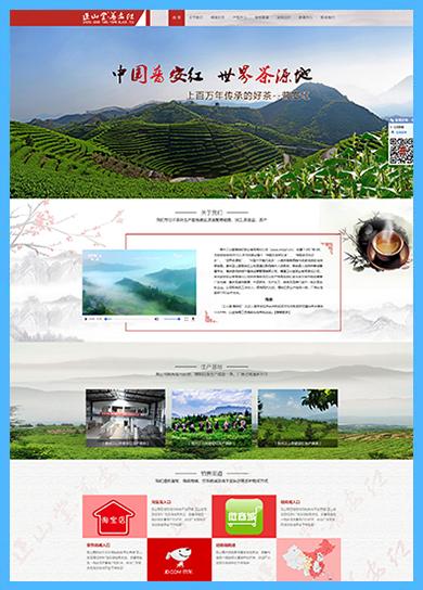贵州正山堂普安红茶业有限责任企业案例