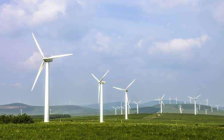 贵州新能源公司