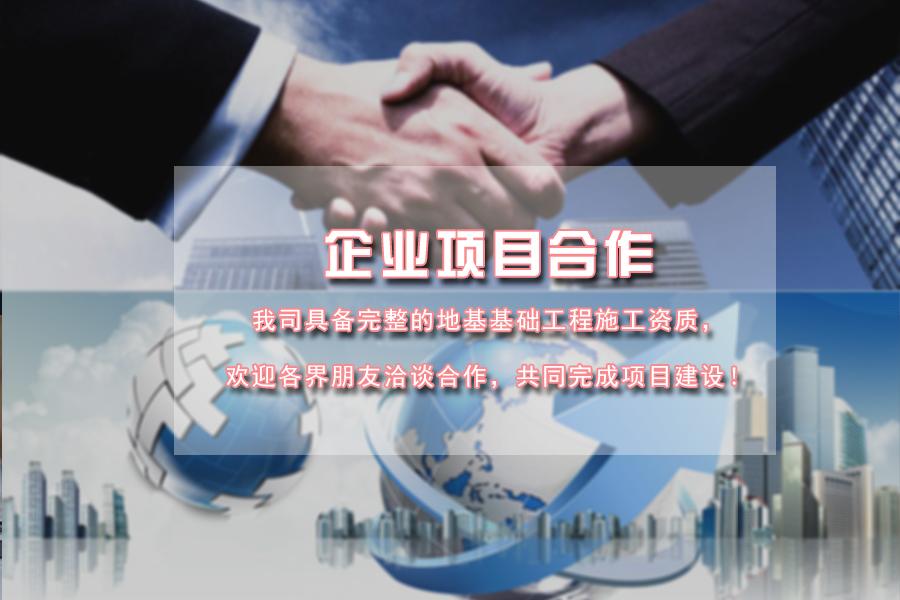 企业项目合作