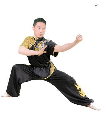 贵阳咏春拳