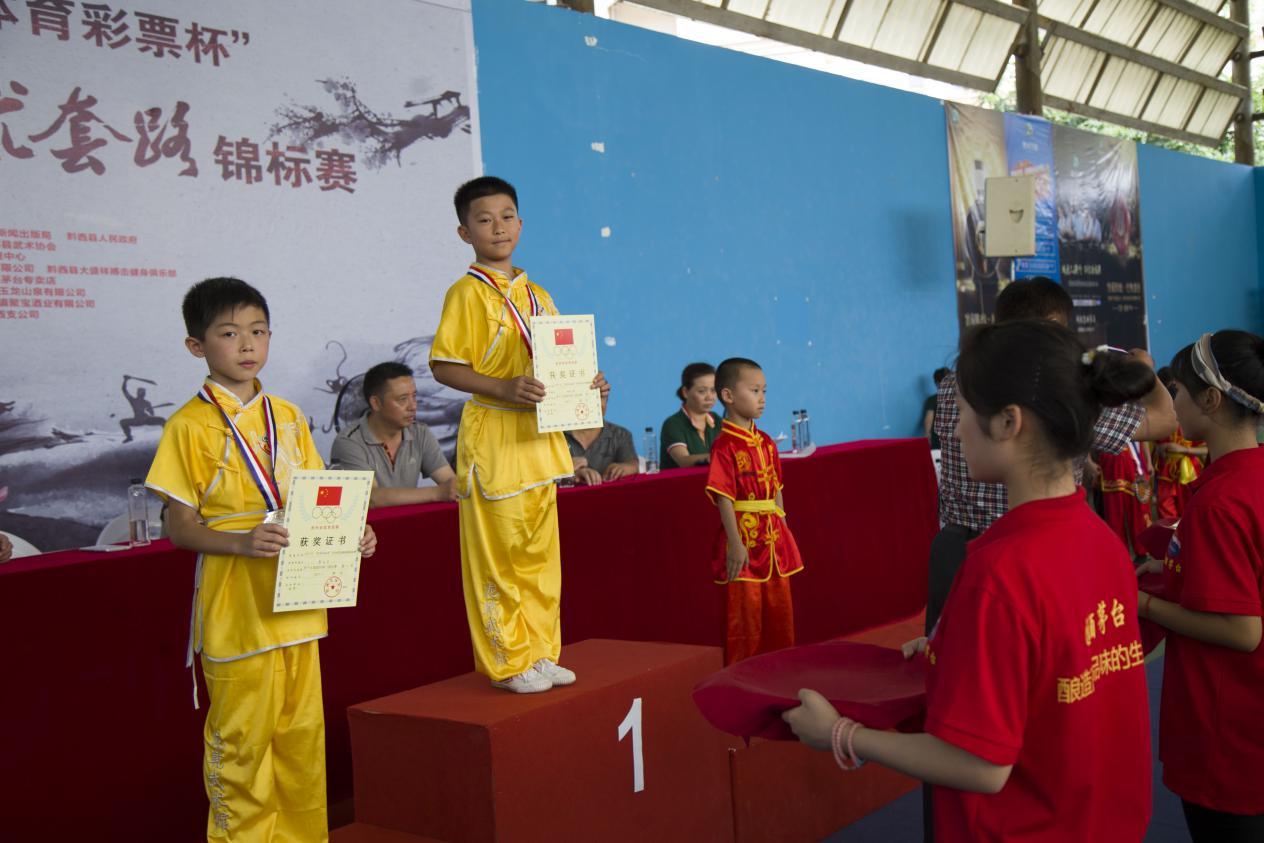 2017年贵州省武术套路散打锦标赛