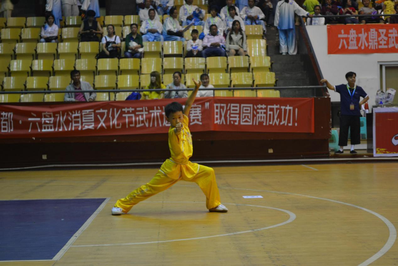 2017年中国凉都•六盘水消夏文化节全国武术邀请赛