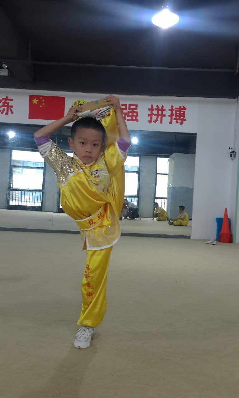 贵州省第六届青少年健身气功比赛(龙黔武术馆小学组八段锦集体赛第一名)