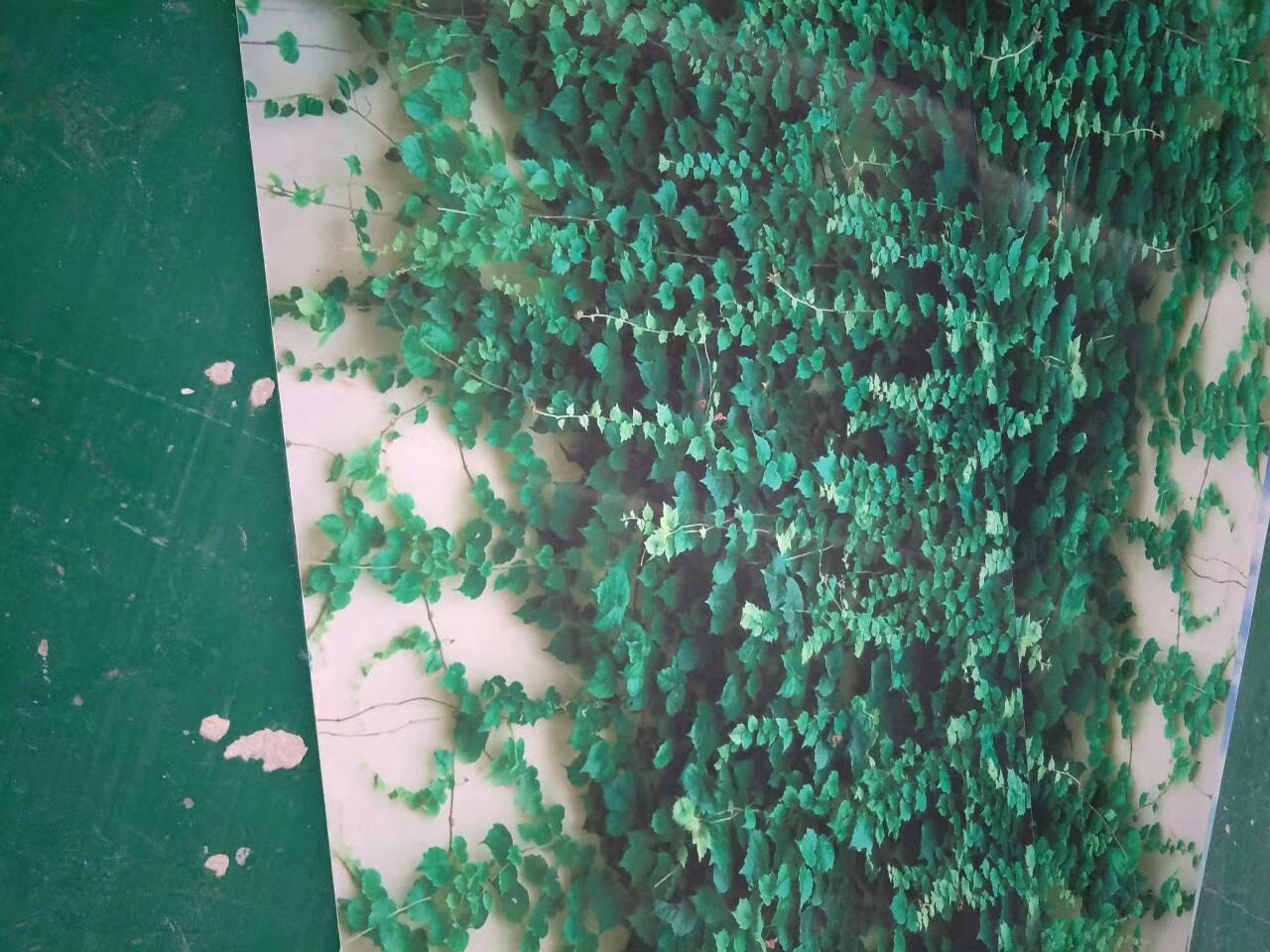 室外彩瓷板价格