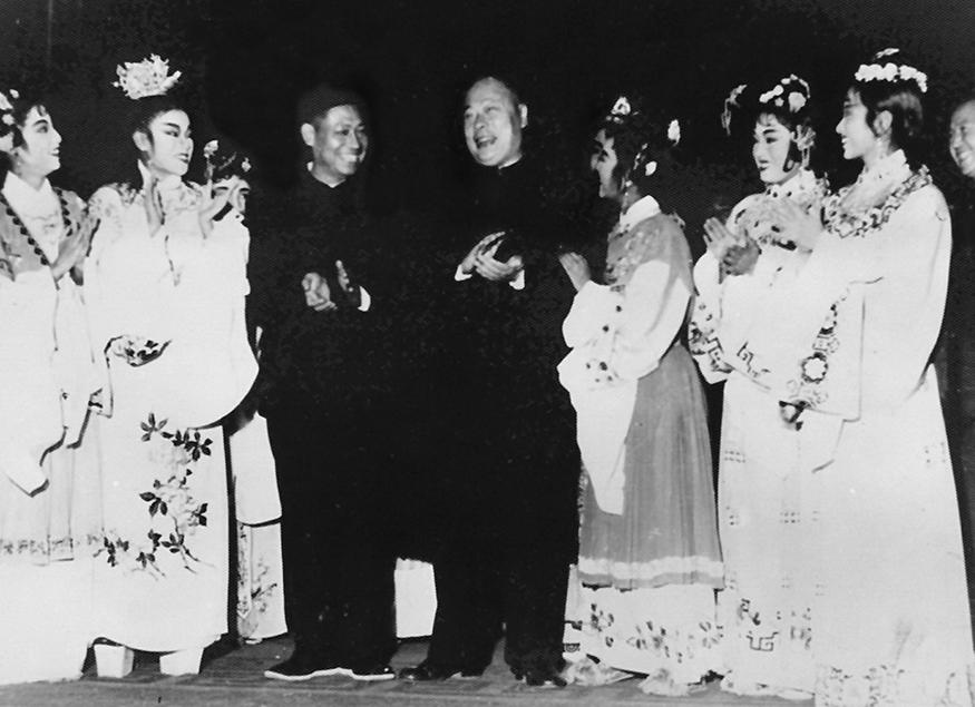 国务院副总理陈毅、周林省长接见