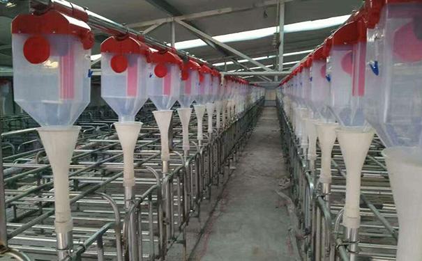 简单了解养殖设备的使用与维护?