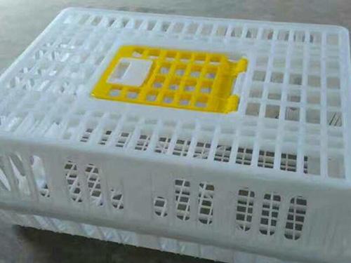 贵州鸡舍养殖设备