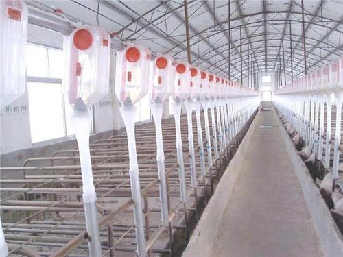 养鸡场都有哪些必不可少的设备?贵州养殖设备厂家