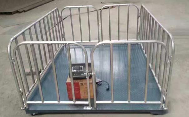 贵州母猪厂床