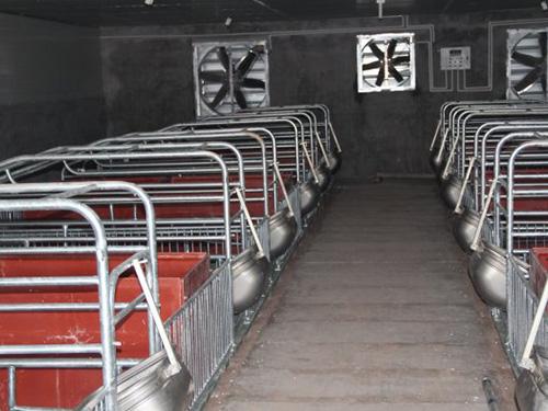 母猪产床价格多少钱