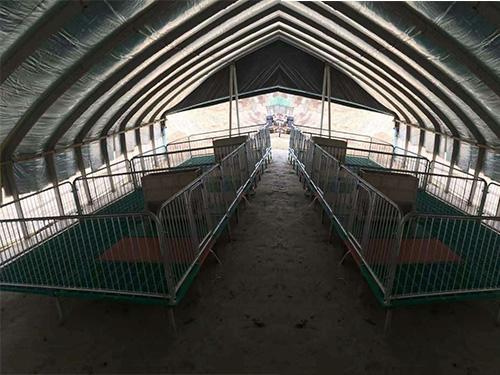 贵州猪用保育床