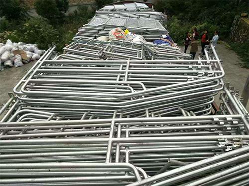 贵州母猪定位栏