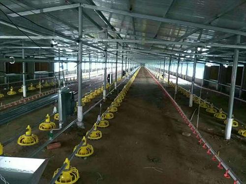 贵阳养鸡设备厂家