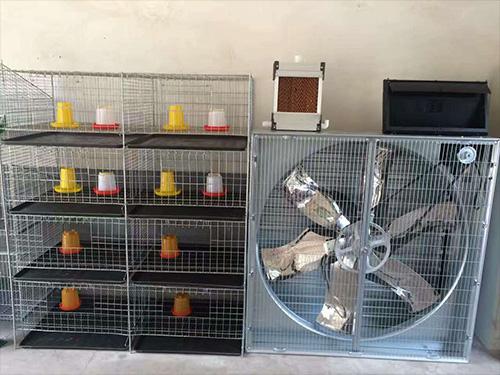 贵州养鸡设备厂