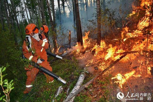 雷击森林起火何其多?