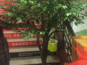 广州仿真树