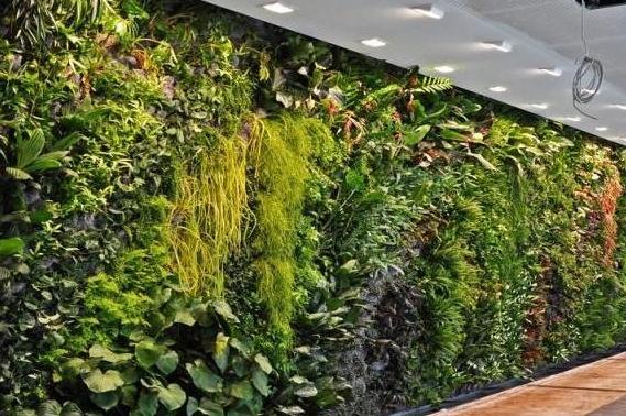 广州仿真植物墙