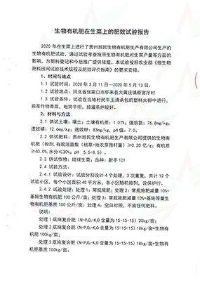 6-3生物有机肥试验报告(新官厅村)