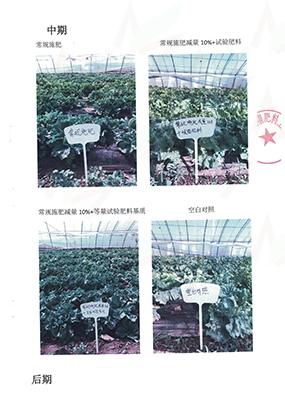 兴仁有机肥厂家