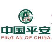 贵州平安保险广域网考勤项目